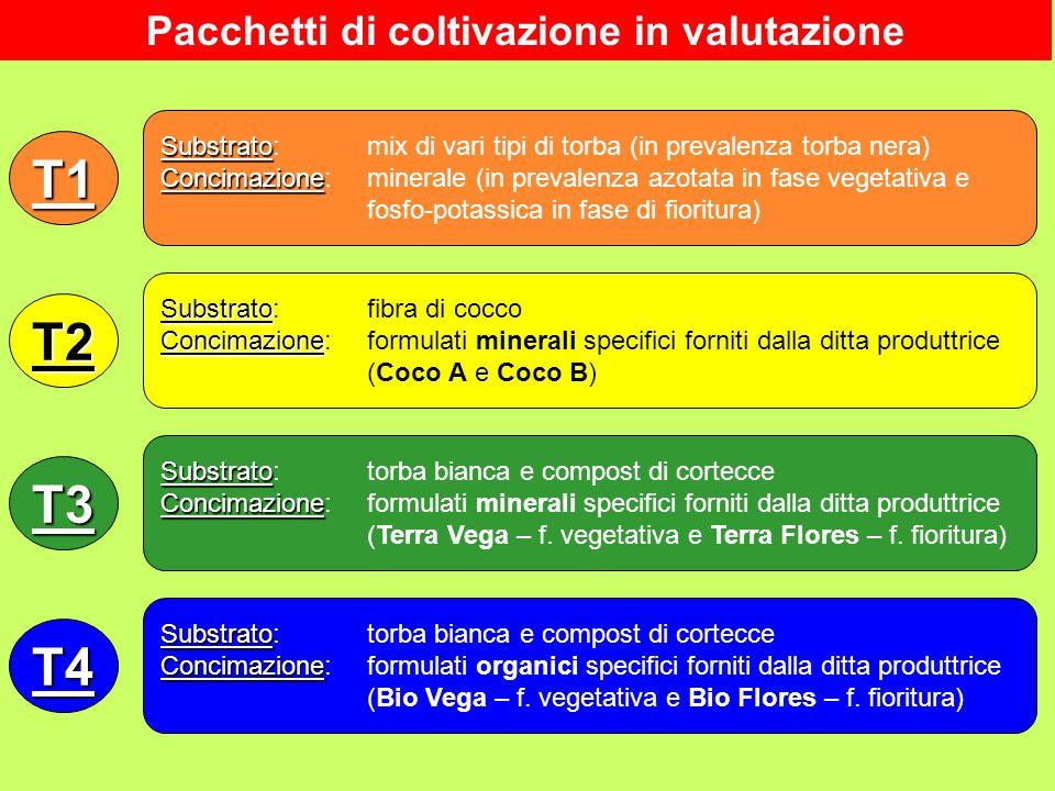 T1 Substrato Substrato: mix di vari tipi di torba (in prevalenza torba nera) Concimazione Concimazione: minerale (in prevalenza azotata in fase vegeta
