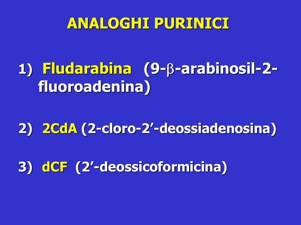 ANALOGHI PURINICI 1) Fludarabina (9- -arabinosil-2- fluoroadenina) 2) 2CdA (2-cloro-2-deossiadenosina) 3) dCF (2-deossicoformicina)