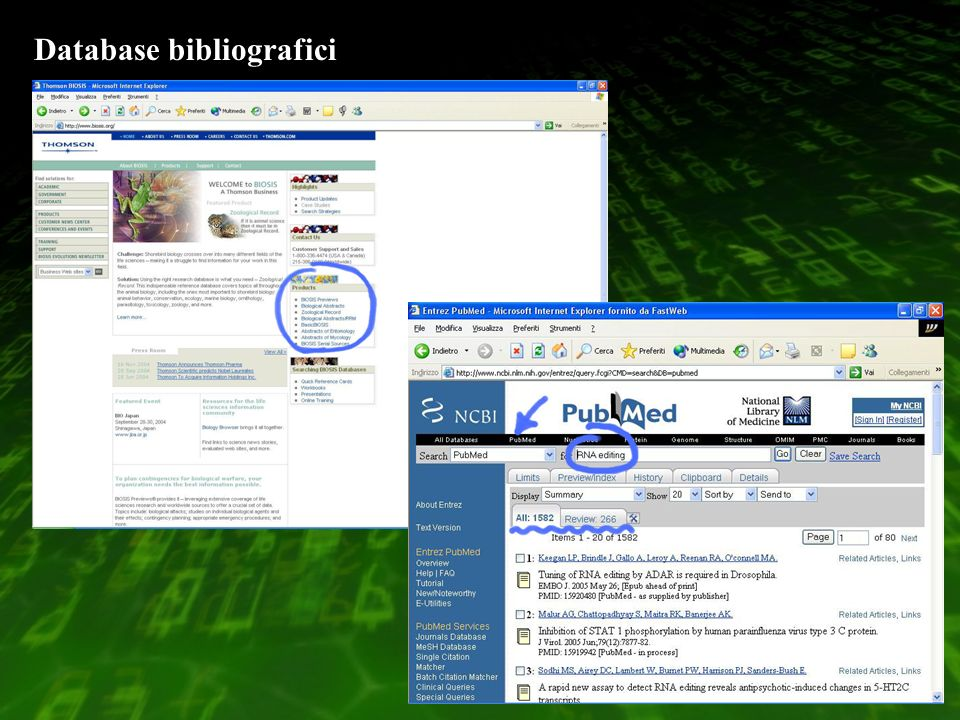 Database bibliografici