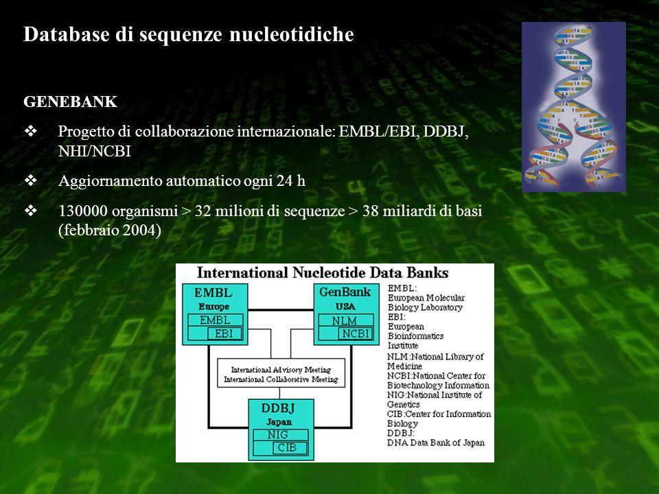 Database di sequenze nucleotidiche GENEBANK Progetto di collaborazione internazionale: EMBL/EBI, DDBJ, NHI/NCBI Aggiornamento automatico ogni 24 h 130000 organismi > 32 milioni di sequenze > 38 miliardi di basi (febbraio 2004)