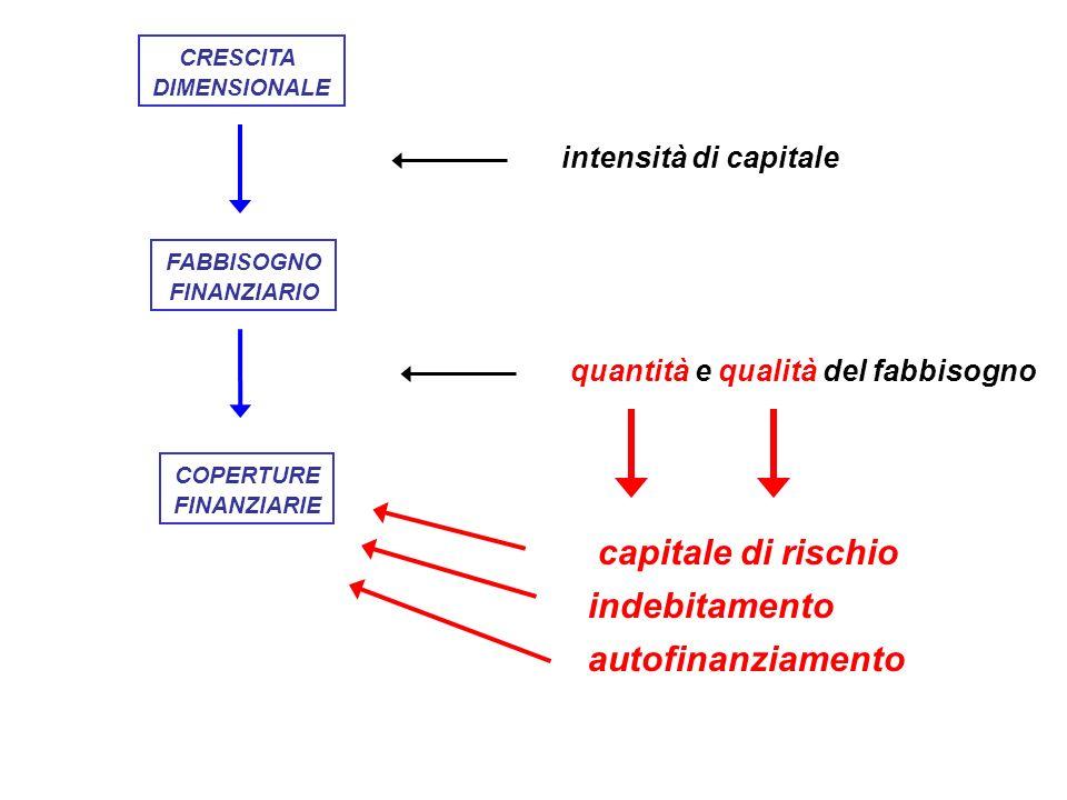FABBISOGNO FINANZIARIO COPERTURE FINANZIARIE CRESCITA DIMENSIONALE autofinanziamento indebitamento capitale di rischio intensità di capitale quantità e qualità del fabbisogno