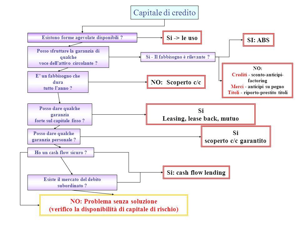 Capitale di credito Esistono forme agevolate disponibili .