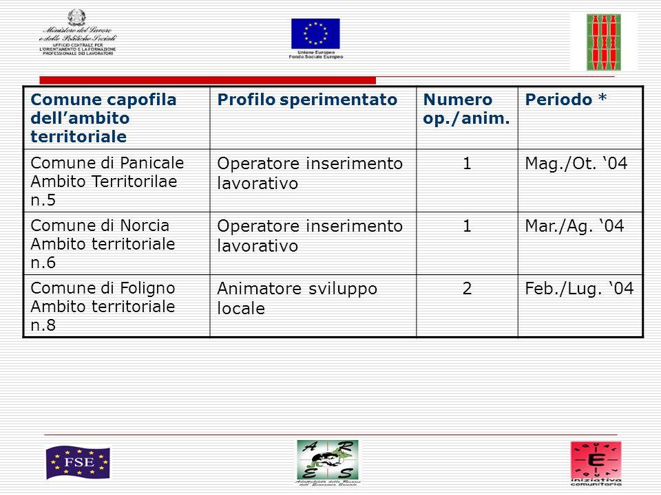 4 Comune capofila dellambito territoriale Profilo sperimentato Numero op./anim.