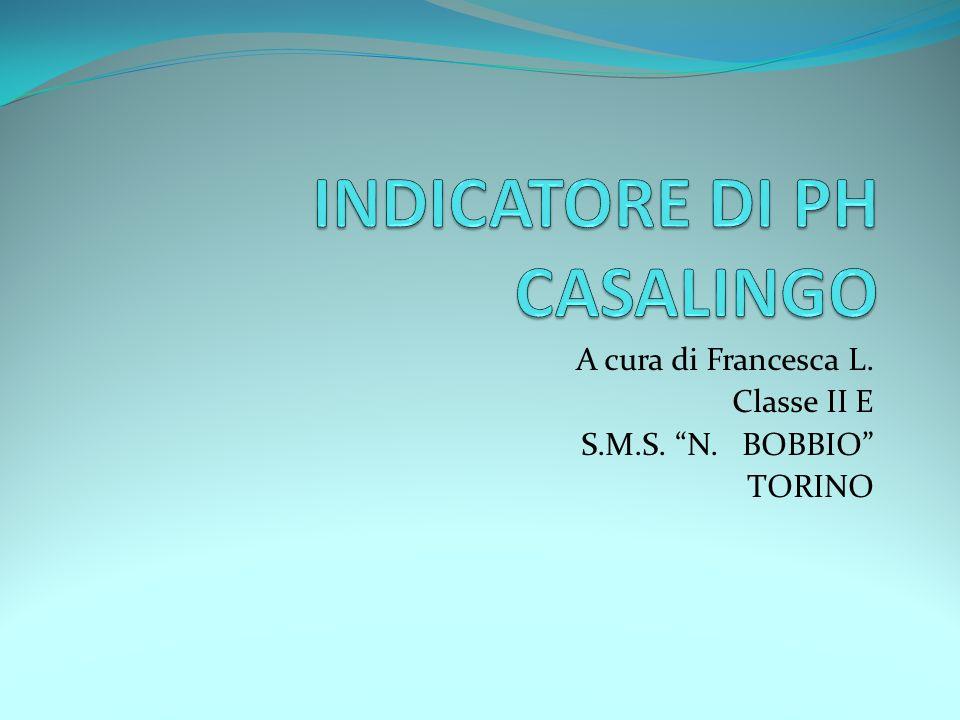 A cura di Francesca L. Classe II E S.M.S. N. BOBBIO TORINO
