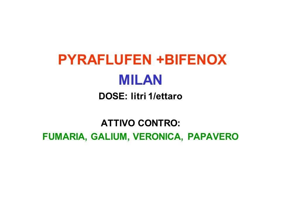 PYRAFLUFEN +BIFENOX MILAN DOSE: litri 1/ettaro ATTIVO CONTRO: FUMARIA, GALIUM, VERONICA, PAPAVERO