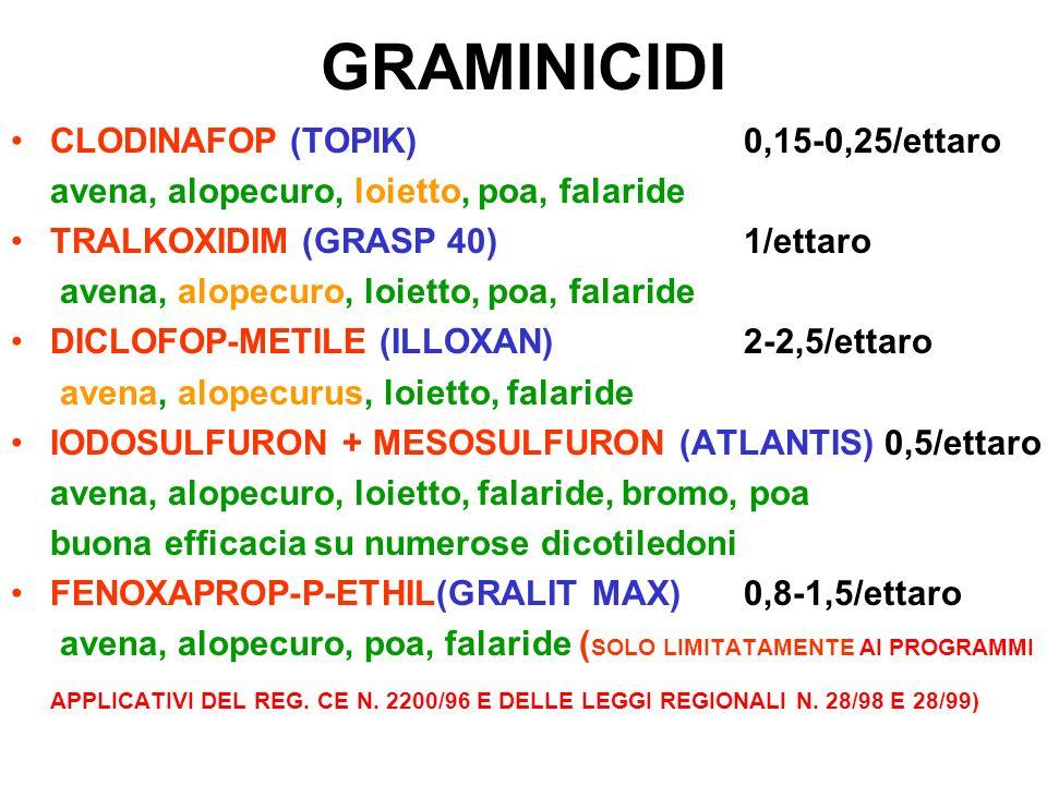 GRAMINICIDI CLODINAFOP (TOPIK)0,15-0,25/ettaro avena, alopecuro, loietto, poa, falaride TRALKOXIDIM (GRASP 40)1/ettaro avena, alopecuro, loietto, poa,