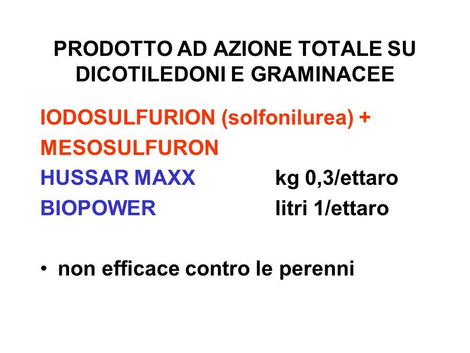 PRODOTTO AD AZIONE TOTALE SU DICOTILEDONI E GRAMINACEE IODOSULFURION (solfonilurea) + MESOSULFURON HUSSAR MAXXkg 0,3/ettaro BIOPOWERlitri 1/ettaro non