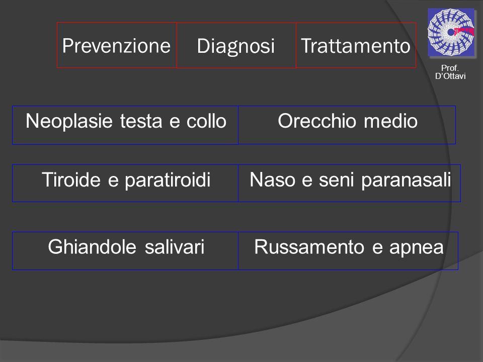 Prevenzione Neoplasie testa e collo Tiroide e paratiroidi Ghiandole salivari Diagnosi Trattamento Orecchio medio Naso e seni paranasali Russamento e a