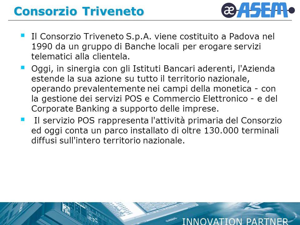 Consorzio Triveneto Il Consorzio Triveneto S.p.A.