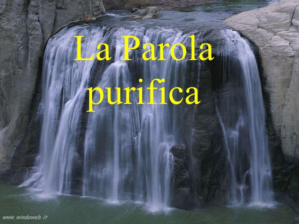 La Parola purifica