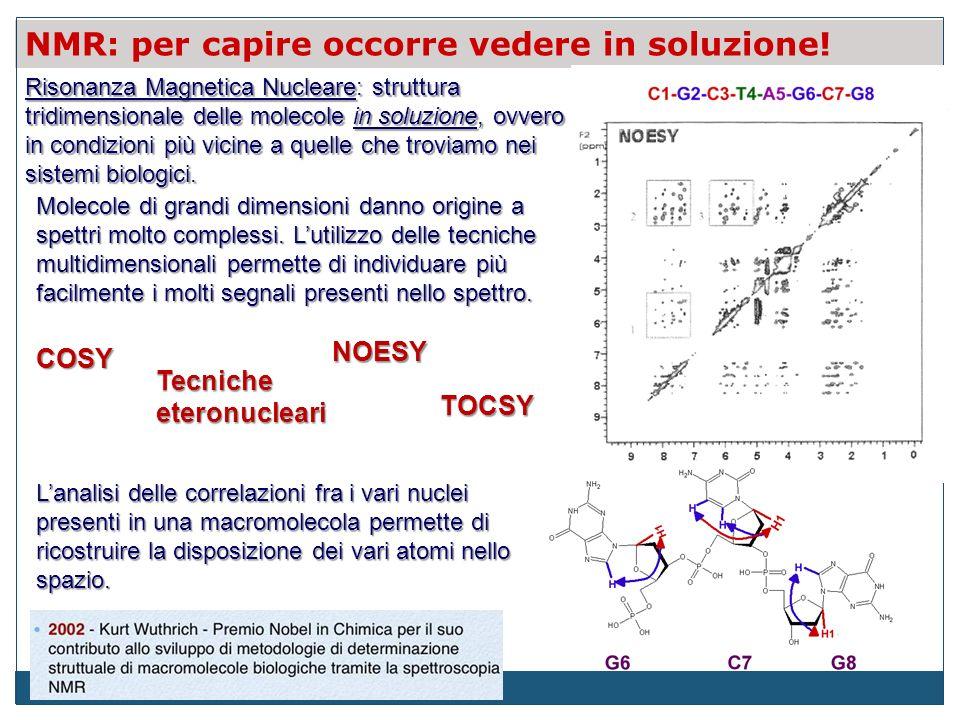 NMR: per capire occorre vedere in soluzione! Lanalisi delle correlazioni fra i vari nuclei presenti in una macromolecola permette di ricostruire la di