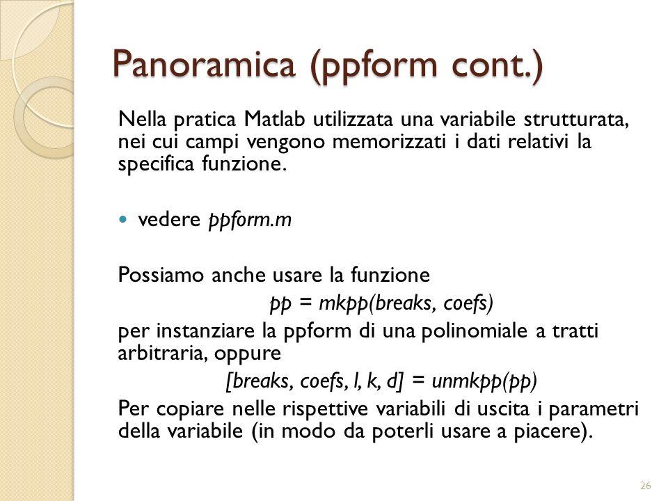 Panoramica (ppform cont.) Nella pratica Matlab utilizzata una variabile strutturata, nei cui campi vengono memorizzati i dati relativi la specifica fu