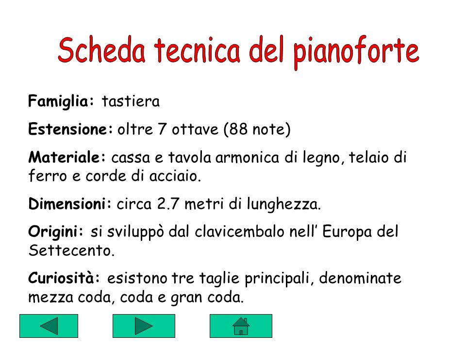 Famiglia: tastiera Estensione: oltre 7 ottave (88 note) Materiale: cassa e tavola armonica di legno, telaio di ferro e corde di acciaio.