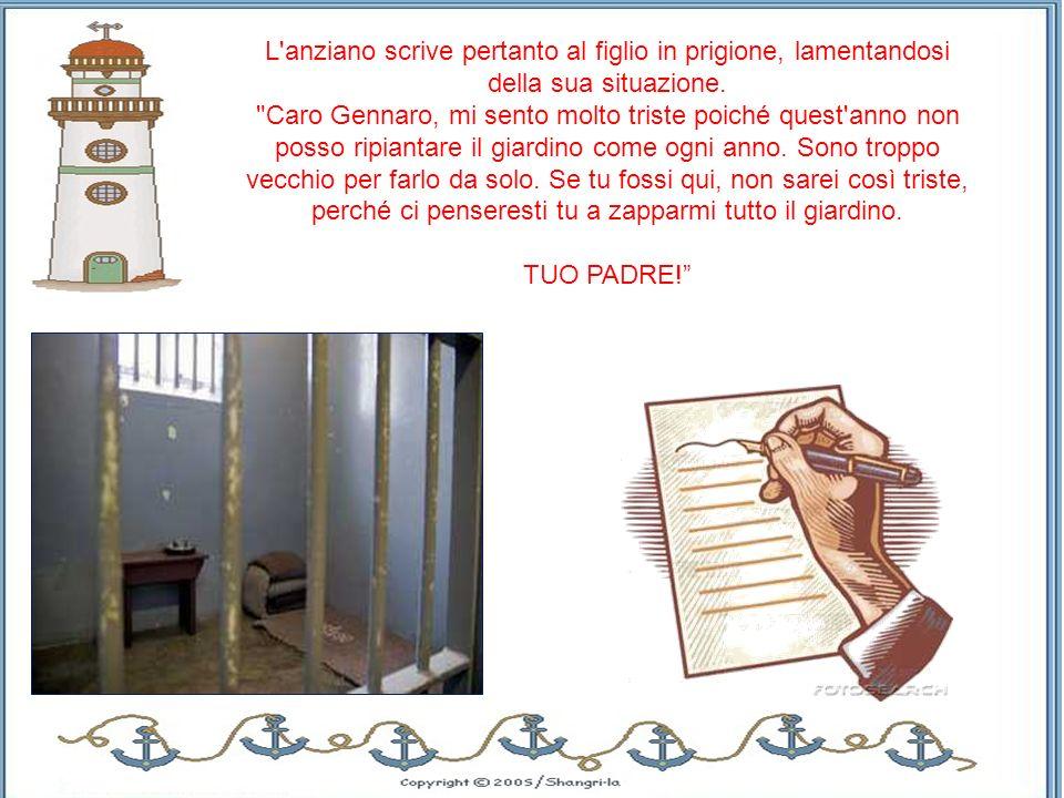 Un anziano Napoletano, trasferito nelle campagne del Milanese, in primavera si faceva aiutare dal figlio a ripiantare il giardino.