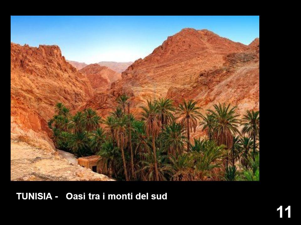 11 TUNISIA - Oasi tra i monti del sud
