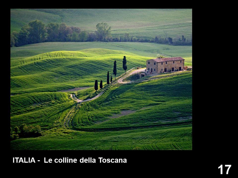 17 ITALIA - Le colline della Toscana