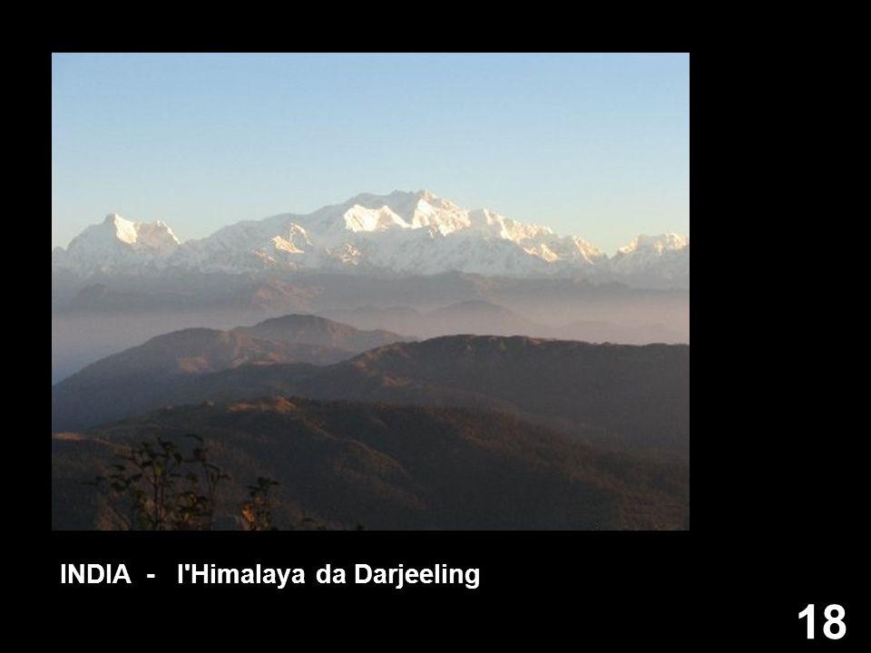 18 INDIA - l'Himalaya da Darjeeling