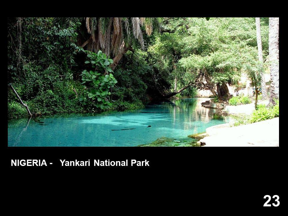 23 NIGERIA - Yankari National Park