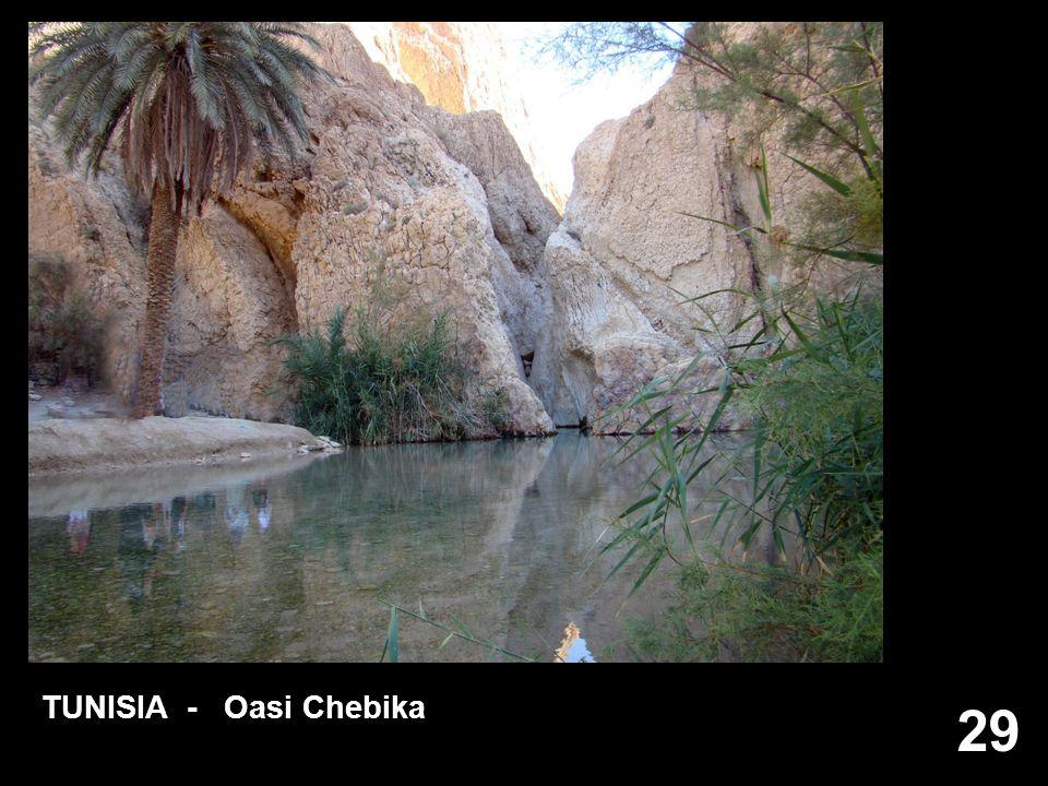 29 TUNISIA - Oasi Chebika