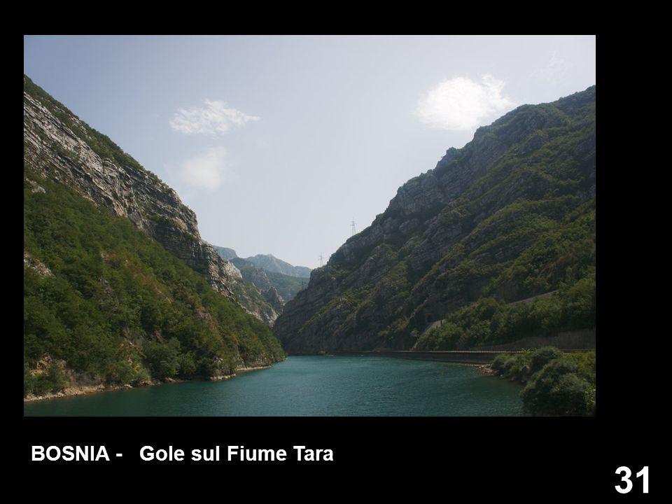 31 BOSNIA - Gole sul Fiume Tara
