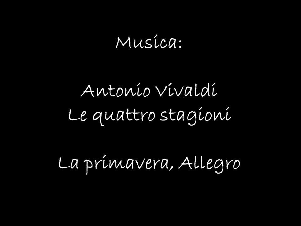 Musica: Antonio Vivaldi Le quattro stagioni La primavera, Allegro