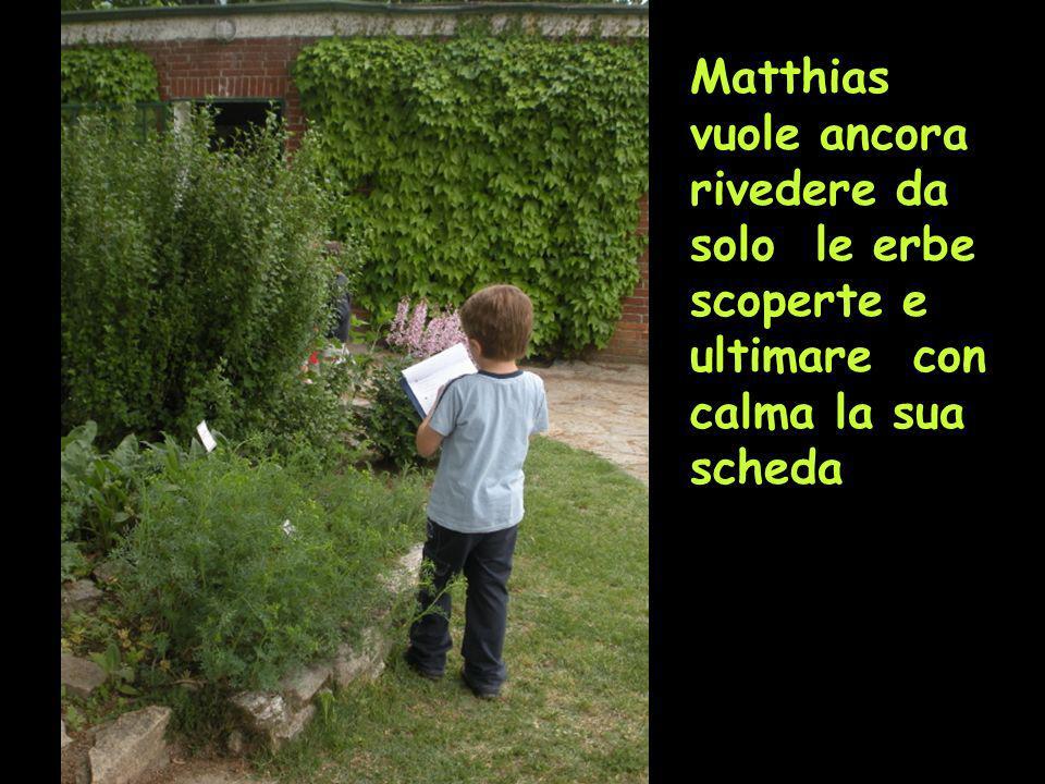 Matthias vuole ancora rivedere da solo le erbe scoperte e ultimare con calma la sua scheda