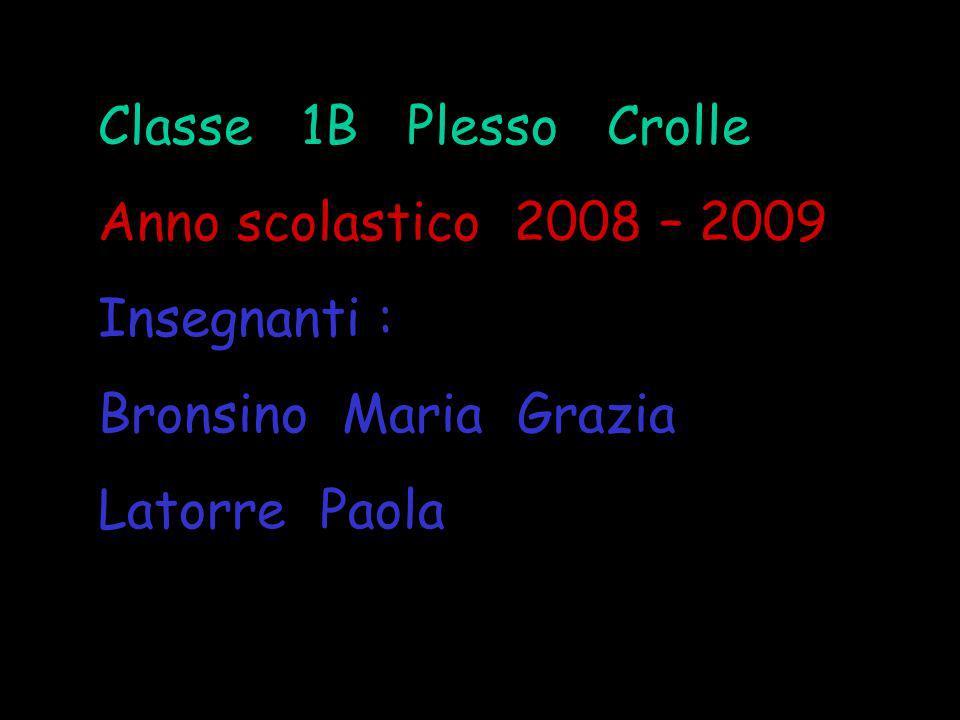 Classe 1B Plesso Crolle Anno scolastico 2008 – 2009 Insegnanti : Bronsino Maria Grazia Latorre Paola
