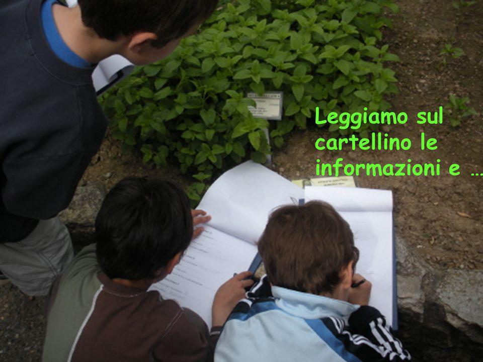 Leggiamo sul cartellino le informazioni e …