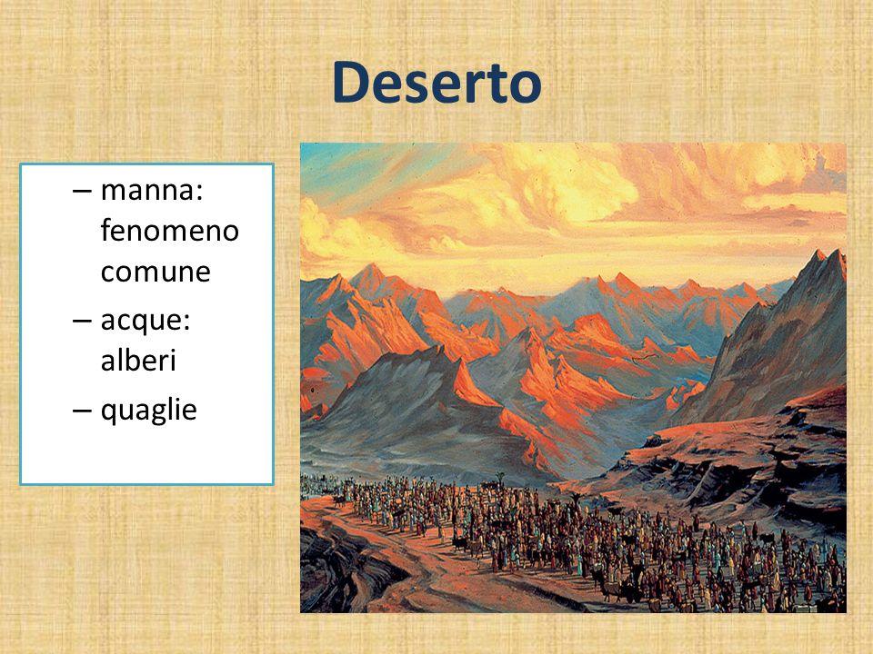 Deserto – manna: fenomeno comune – acque: alberi – quaglie