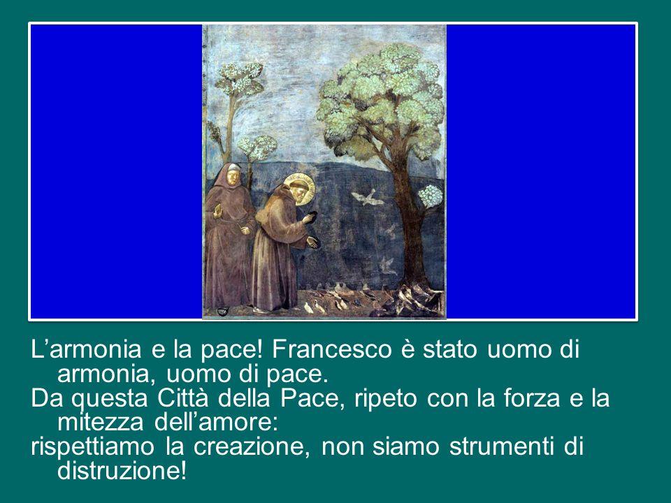 E soprattutto san Francesco testimonia il rispetto per tutto, testimonia che luomo è chiamato a custodire luomo, che luomo sia al centro della creazio