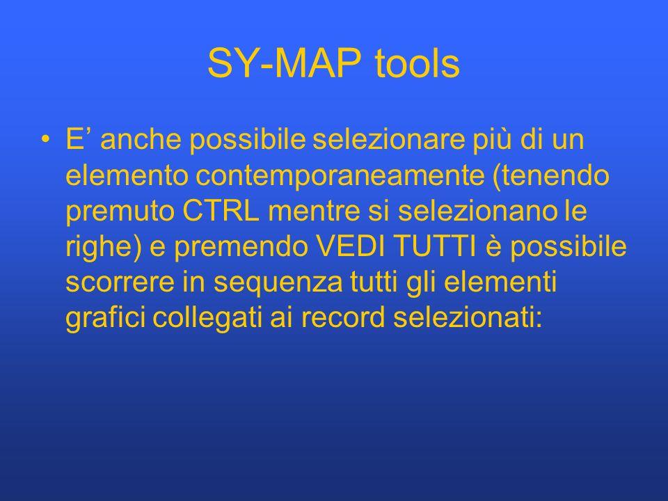 SY-MAP tools E anche possibile selezionare più di un elemento contemporaneamente (tenendo premuto CTRL mentre si selezionano le righe) e premendo VEDI TUTTI è possibile scorrere in sequenza tutti gli elementi grafici collegati ai record selezionati: