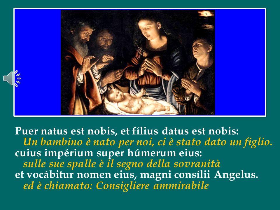 Preghiamolo affinché la santa curiosità e la santa gioia dei pastori tocchino in questora anche noi, e andiamo quindi con gioia di là, a Betlemme – ve