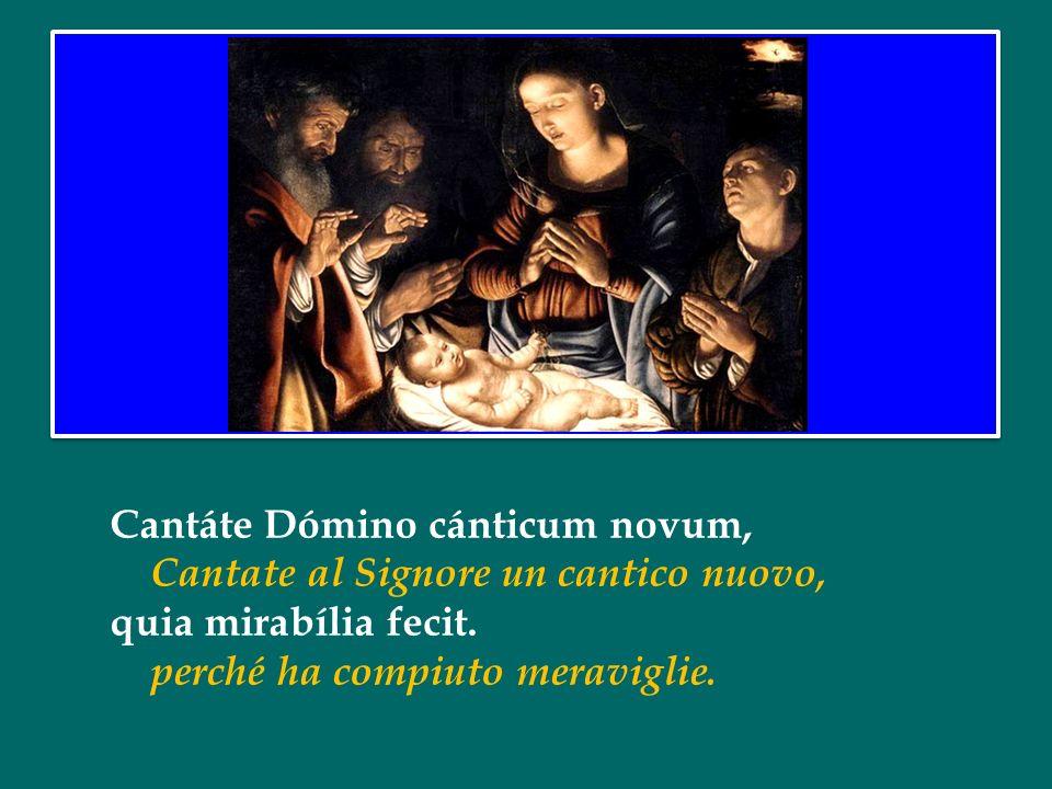 Benedetto XVI Omelia della Messa della Notte di Natale 24 dicembre 2012 nella Solennità del Natale del Signore Benedetto XVI Omelia della Messa della