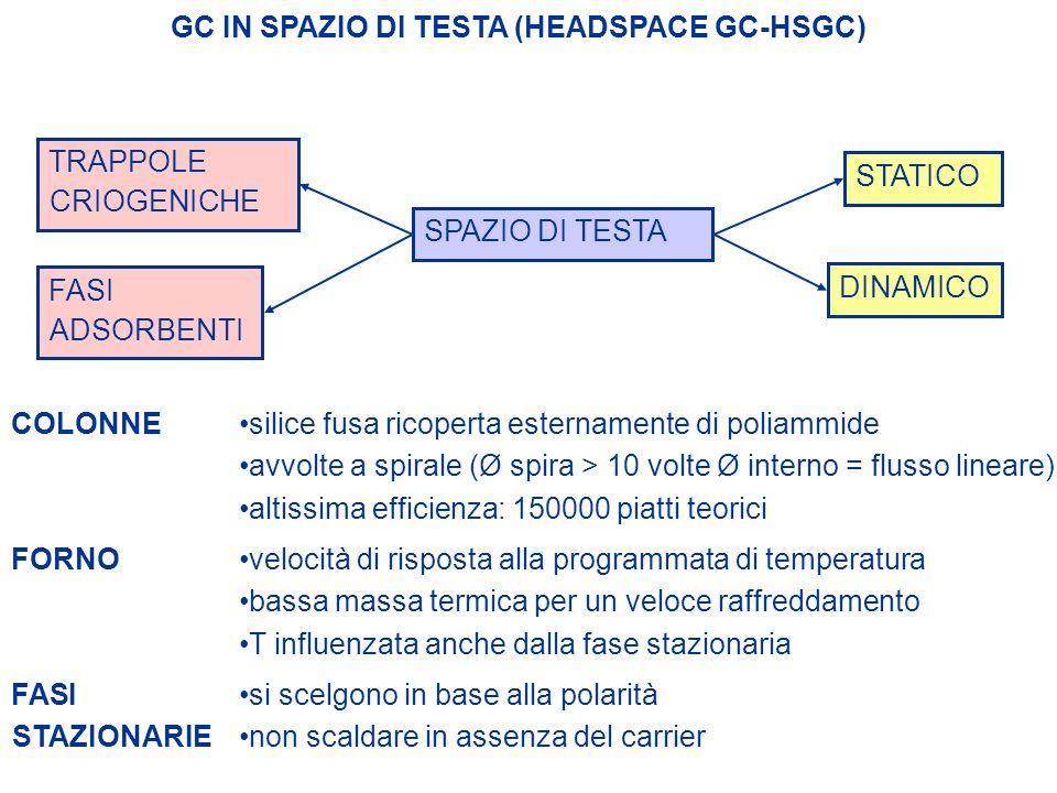 GC IN SPAZIO DI TESTA (HEADSPACE GC-HSGC) SPAZIO DI TESTA STATICO DINAMICO TRAPPOLE CRIOGENICHE FASI ADSORBENTI COLONNEsilice fusa ricoperta estername