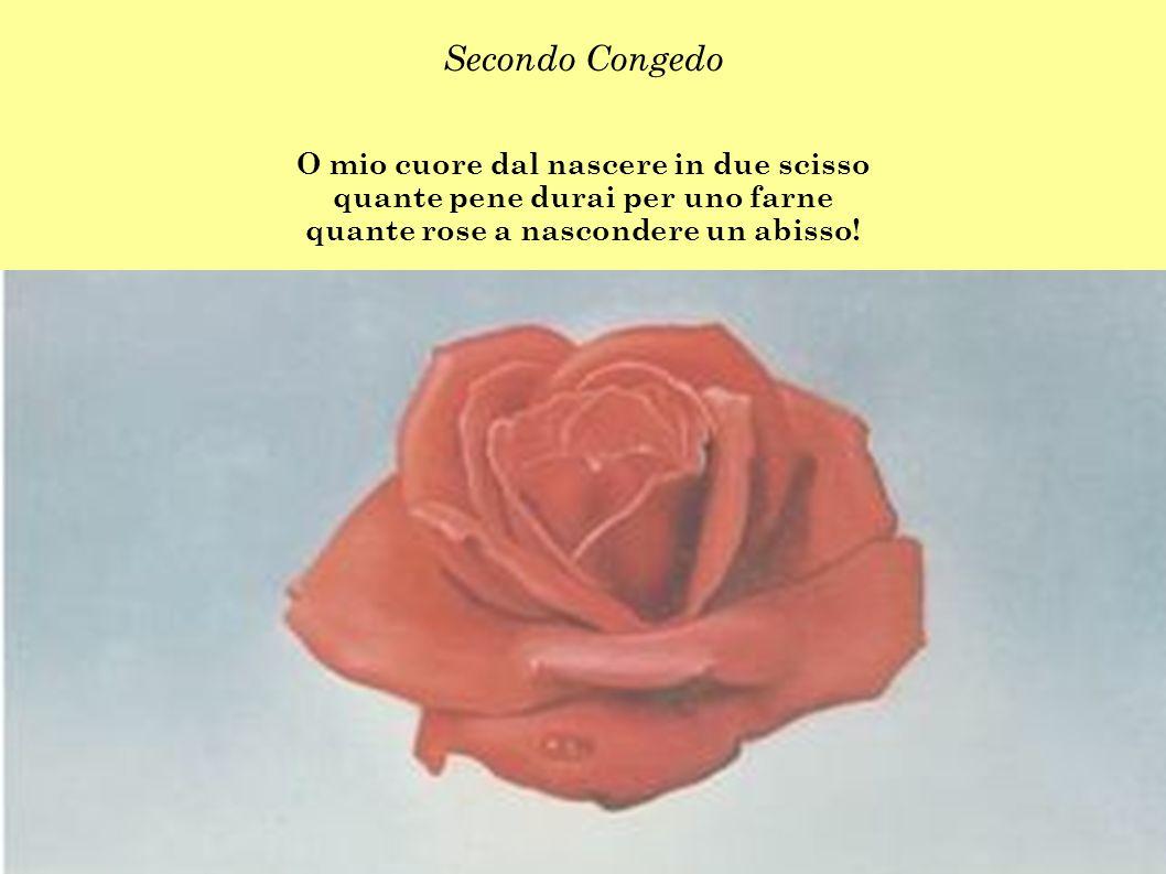 Secondo Congedo O mio cuore dal nascere in due scisso quante pene durai per uno farne quante rose a nascondere un abisso!