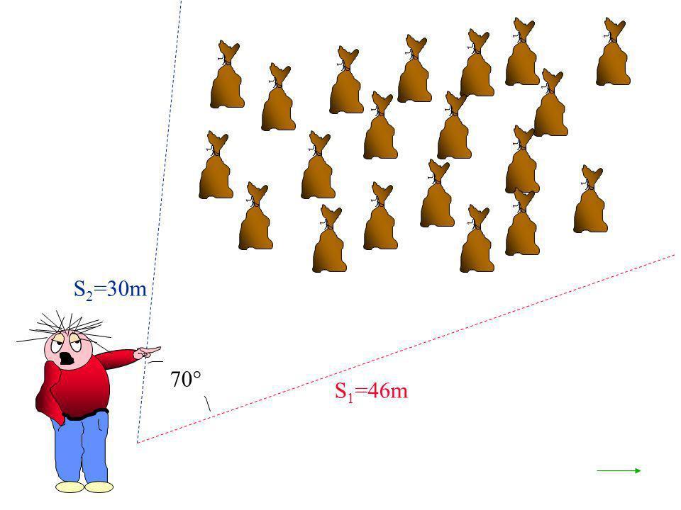 70° S 1 =46m S 2 =30m