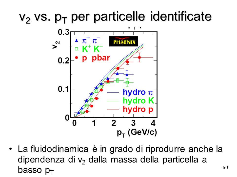 50 v 2 vs. p T per particelle identificate La fluidodinamica è in grado di riprodurre anche la dipendenza di v 2 dalla massa della particella a basso