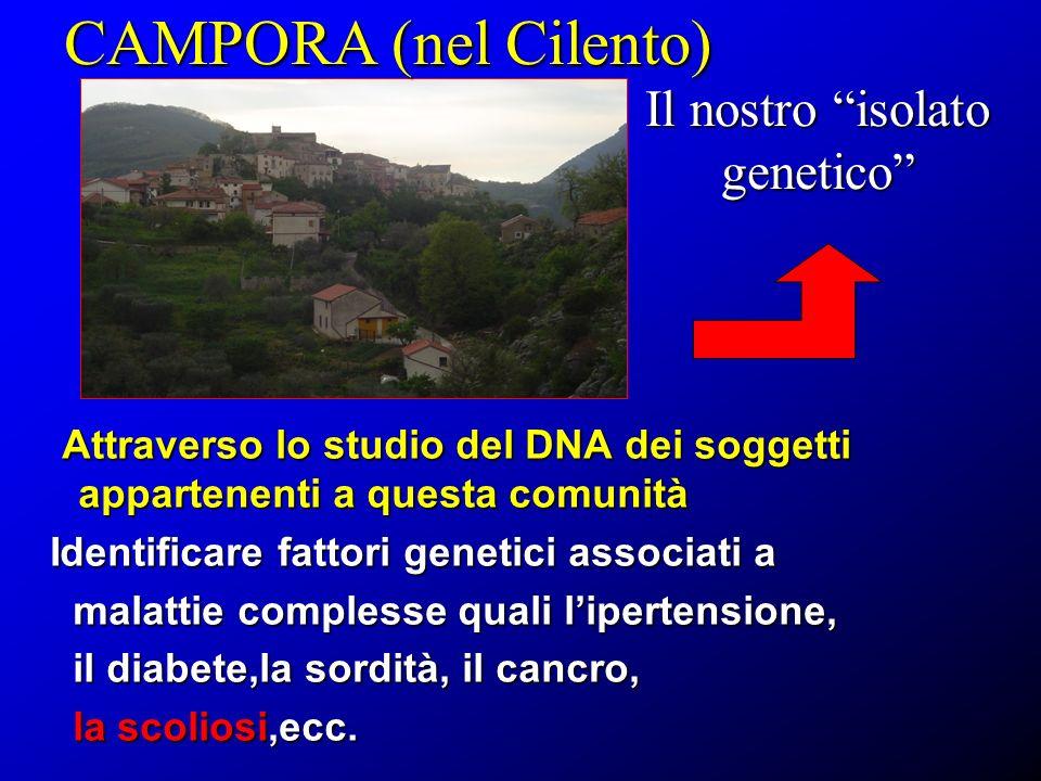 CAMPORA (nel Cilento) Il nostro isolato genetico Attraverso lo studio del DNA dei soggetti appartenenti a questa comunità Attraverso lo studio del DNA