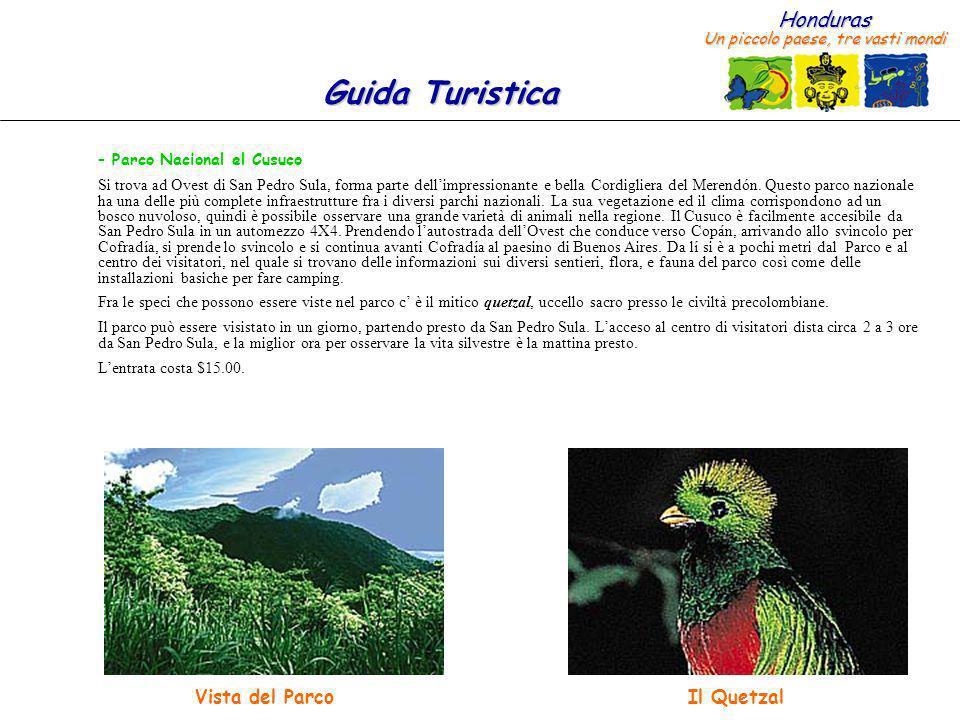 Honduras Un piccolo paese, tre vasti mondi Guida Turistica – Parco Nacional el Cusuco Si trova ad Ovest di San Pedro Sula, forma parte dellimpressiona