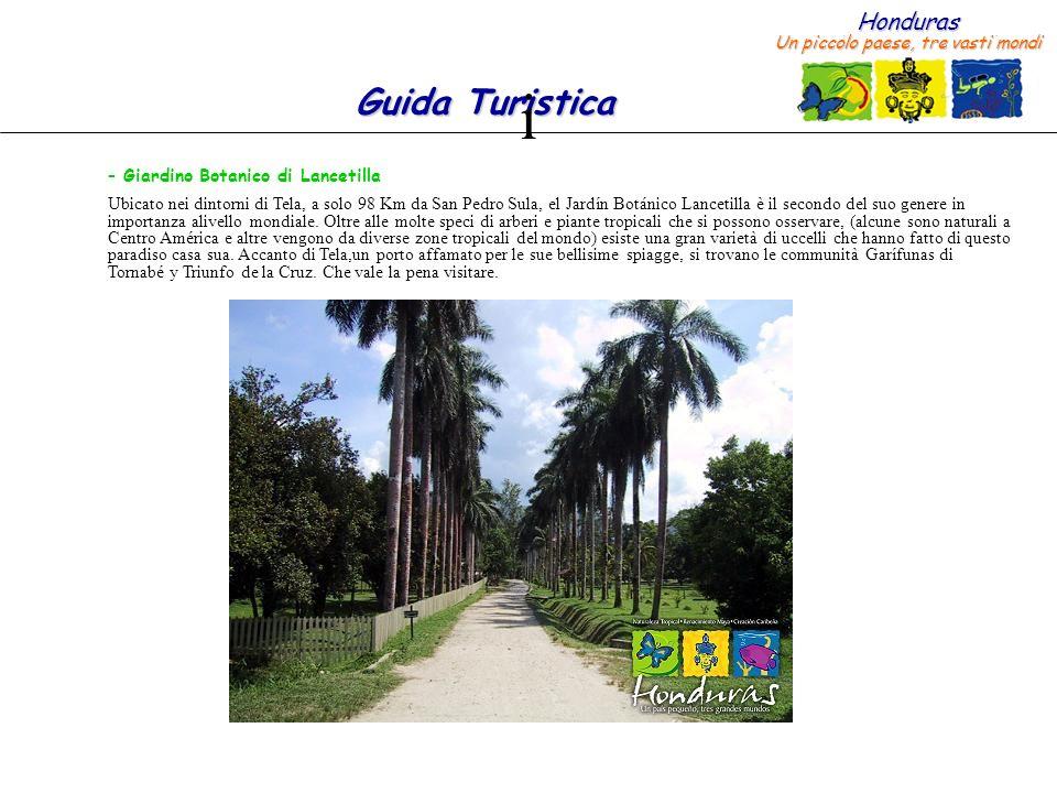Honduras Un piccolo paese, tre vasti mondi Guida Turistica – Giardino Botanico di Lancetilla Ubicato nei dintorni di Tela, a solo 98 Km da San Pedro Sula, el Jardín Botánico Lancetilla è il secondo del suo genere in importanza alivello mondiale.