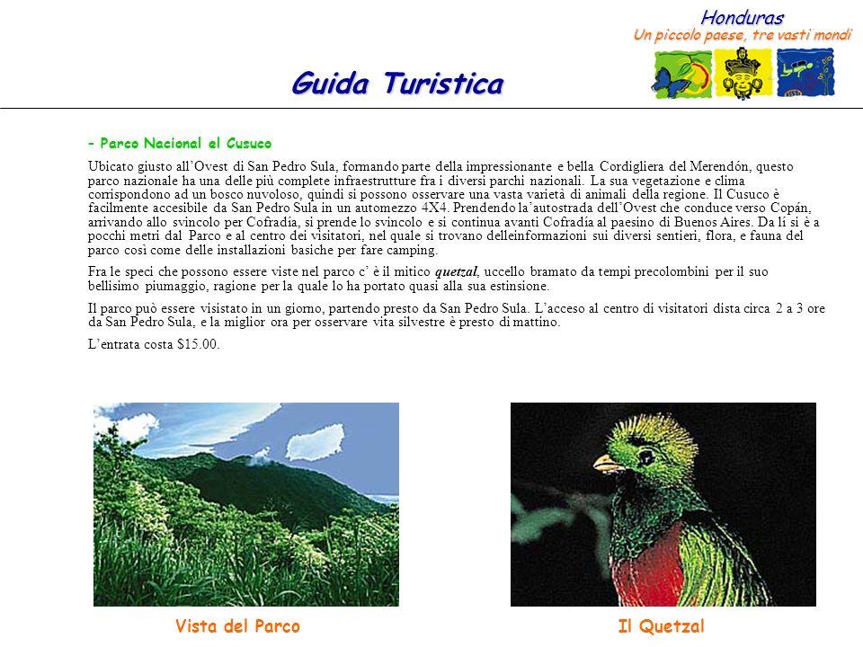 Honduras Un piccolo paese, tre vasti mondi Guida Turistica – Parco Nacional el Cusuco Ubicato giusto allOvest di San Pedro Sula, formando parte della impressionante e bella Cordigliera del Merendón, questo parco nazionale ha una delle più complete infraestrutture fra i diversi parchi nazionali.