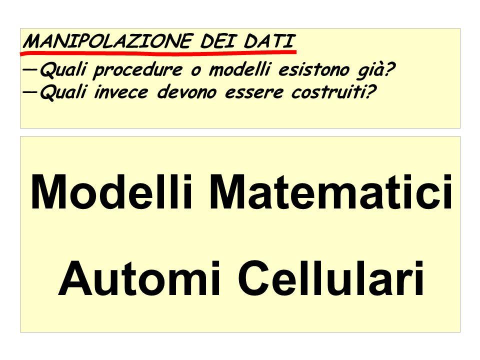 Modelli Matematici Automi Cellulari MANIPOLAZIONE DEI DATI Quali procedure o modelli esistono già.