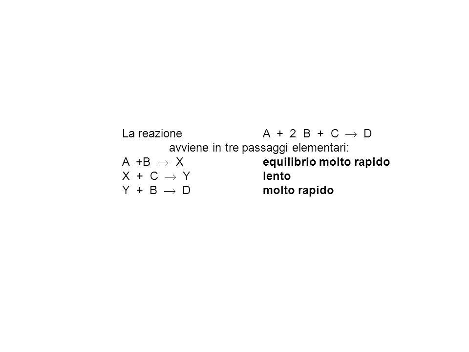 La reazione A + 2 B + C D avviene in tre passaggi elementari: A +B X equilibrio molto rapido X + C Y lento Y + B D molto rapido
