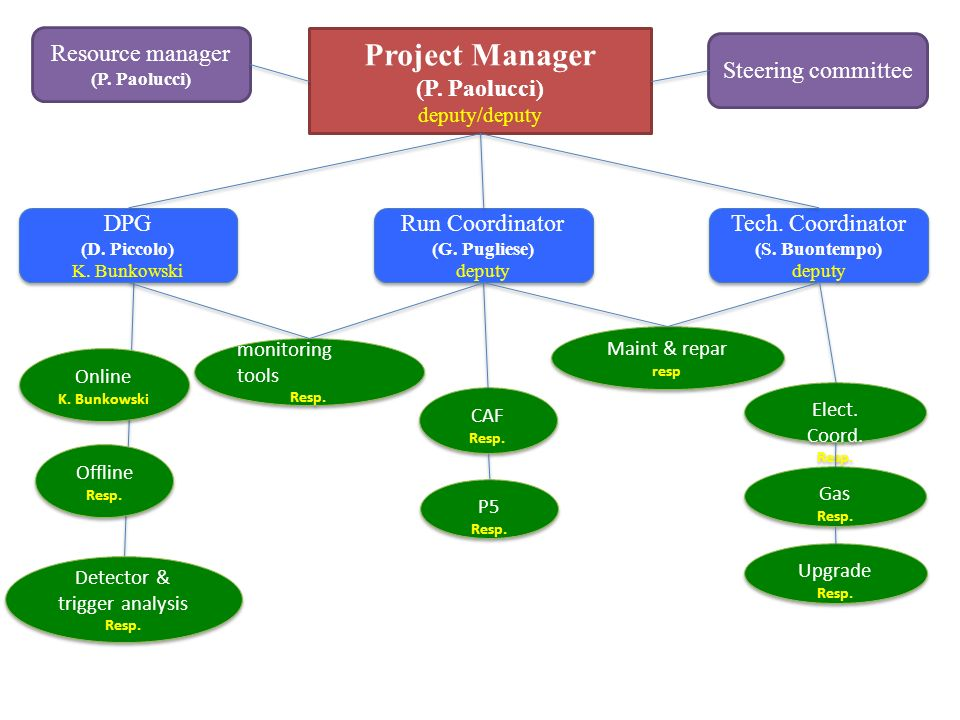 Project Manager (P. Paolucci) deputy/deputy Run Coordinator (G.