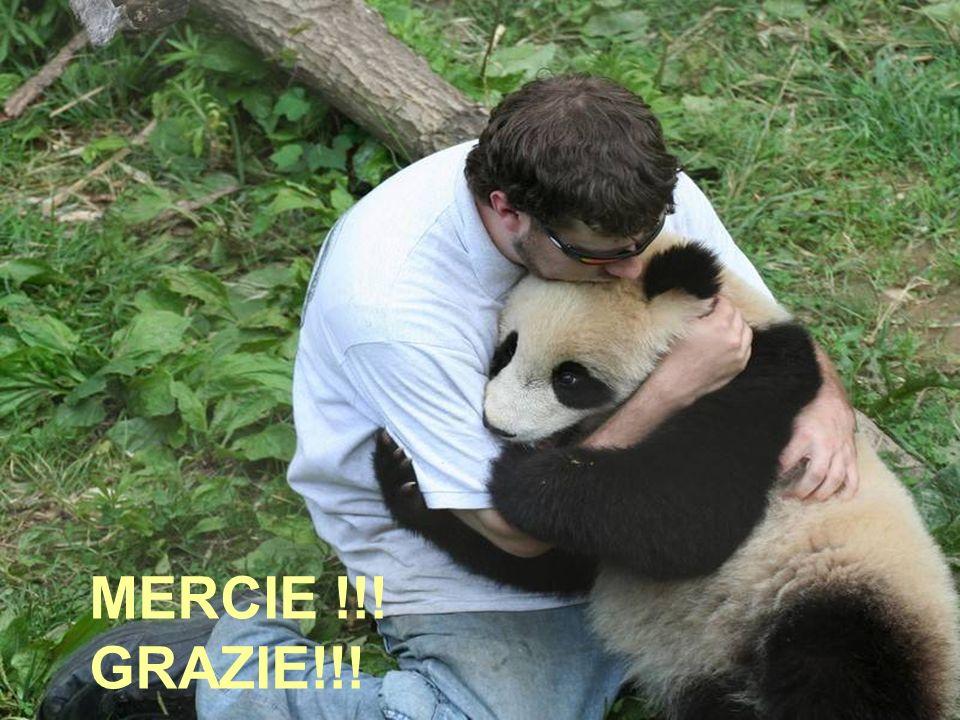 MERCIE !! GRAZIE!!