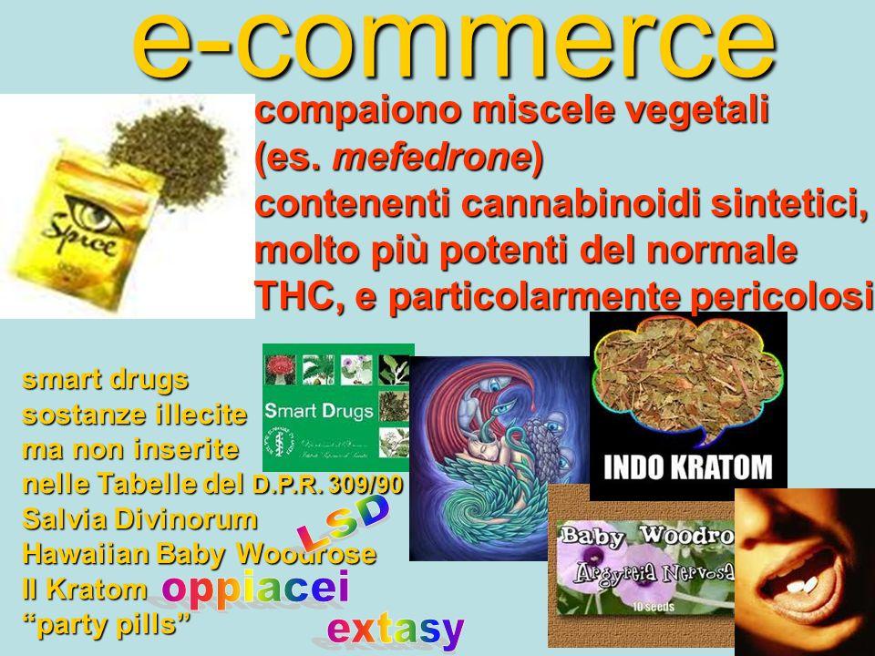 e-commerce smart drugs sostanze illecite ma non inserite nelle Tabelle del D.P.R. 309/90 Salvia Divinorum Hawaiian Baby Woodrose Il Kratom party pills