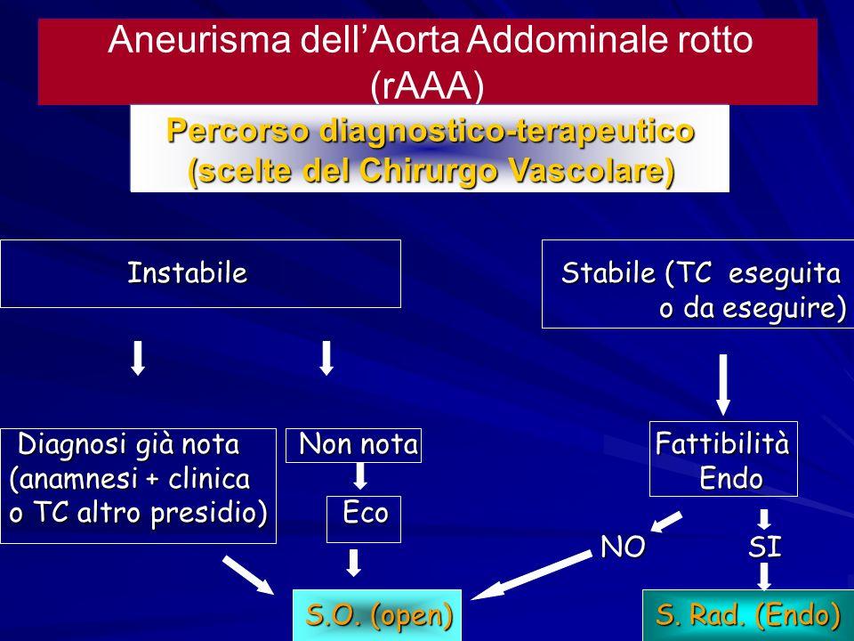 Aneurisma dellAorta Addominale rotto (rAAA) Instabile Stabile (TC eseguita Instabile Stabile (TC eseguita o da eseguire) o da eseguire) Diagnosi già n