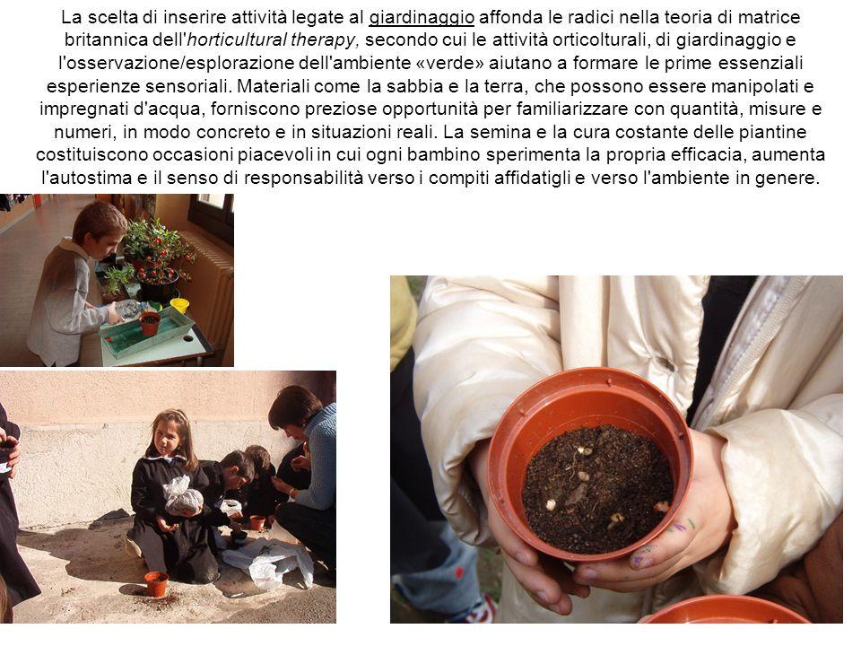 La scelta di inserire attività legate al giardinaggio affonda le radici nella teoria di matrice britannica dell horticultural therapy, secondo cui le attività orticolturali, di giardinaggio e l osservazione/esplorazione dell ambiente «verde» aiutano a formare le prime essenziali esperienze sensoriali.