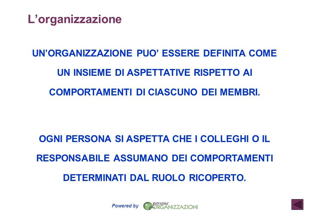 Powered by PIANIFICAZIONE DETERMINAZIONE DEI FINI DELLA STRUTTURA PROGETTAZIONE DI PIANI DI AZIONE QUALI SONO GLI OBIETTIVI ASSEGNATI.
