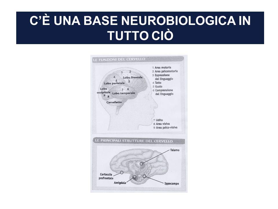 CÈ UNA BASE NEUROBIOLOGICA IN TUTTO CIÒ